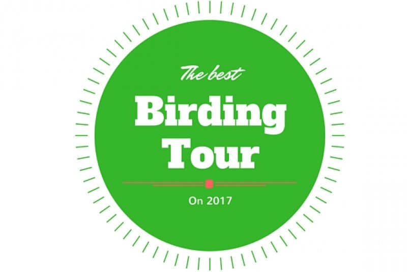Cat Tien national park & Dalat Birding tours | Most highlight tour